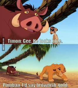 Before 'The Dress' there Timon and Pumba